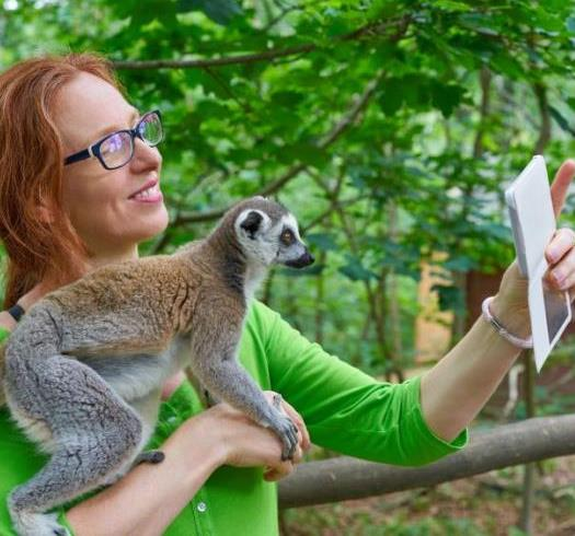 Costa Rica quiere prohibir selfies con animales silvestres